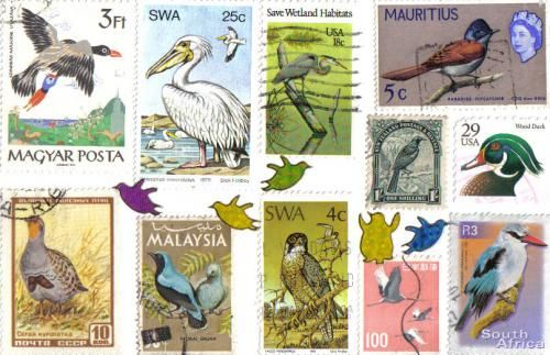 Bird stamps from all over . . .