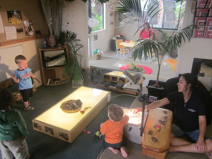 Childcare Henderson | Bear Park Early Childcare Education | Auckland