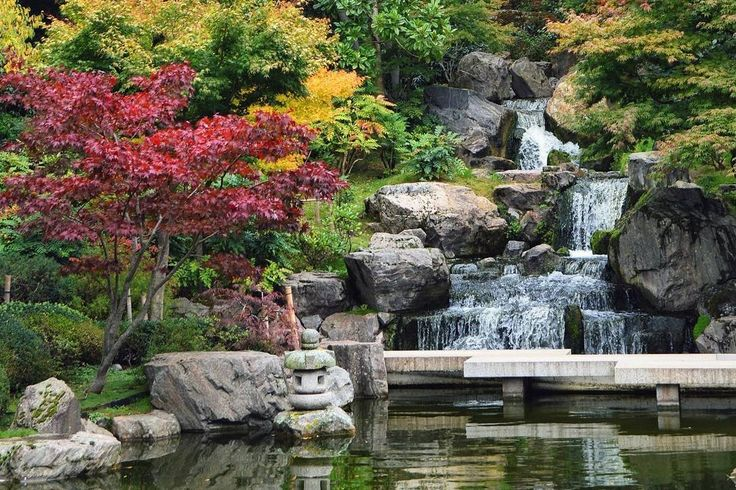 The beautiful Kyoto Garden is an oasis of calm in the heart of Kensington's Holland Park. The charming Kyoto Garden is nestled in Holland Park and even features a roaming muster of peacocks (…