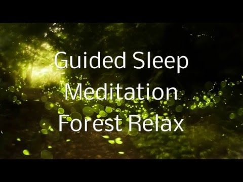 Guided Sleep Meditation FOREST RELAX By Jason Stephenson - YouTubemy favorite…