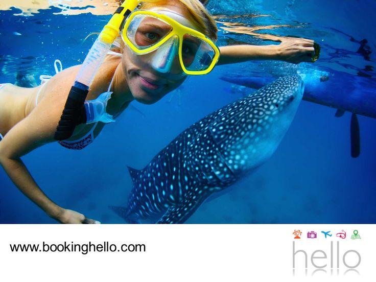LGBT ALL INCLUSIVE AL CARIBE. Punta Cana posee las mejores playas del Caribe, donde llegan miles de turistas que buscan olvidarse de la rutina y disfrutar de la naturaleza. En Booking Hello creamos los mejores packs del mercado, para que puedas escaparte con tu pareja, divertirte y disfrutar de diversos deportes acuáticos en sus cálidas aguas. Para mayores informes, te invitamos a consultar nuestra página web. #bookinghello