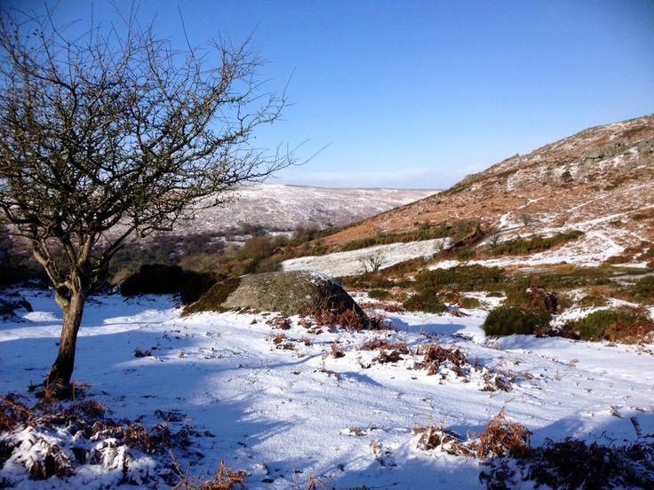 Winter Bonehill Rocks #lovedartmoor www.dartmoor.gov.uk