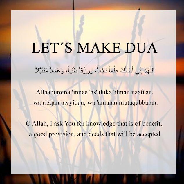 #Allah #muslimknowledge #islam #education #faith #muslim #muslims #religion #knowledge #follow #success #Quran