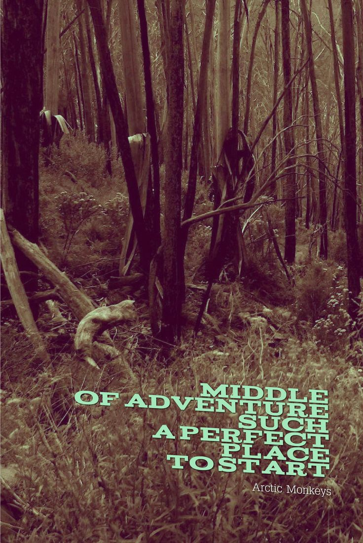 Middle of adventure such a perfect place to start - Arctic Monkeys