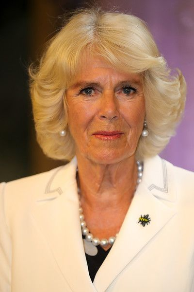 Camilla Parker Bowles Photos Photos - Camilla, Duchess of Cornwall attends a reception in Manchester Town Hall to thank those involved during the Manchester Attack on June 26, 2017 in Manchester, England. Earlier in the day the Prince of Wales and the Duchess visited the scene of the suicide attack at the Manchester Arena. During their visit they both wore a Worker Bee badge, the symbol of the City of Manchester, which has now taken on more credence by people as a sign of resilience. - The…