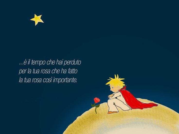 Il piccolo Principe - It is the time that you have wasted on your rose, that makes your rose so important...  Le Petit Prince