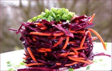Rotkohl-Salat mit Karotten
