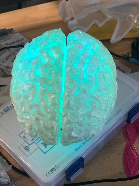 Brain Lamp Rechargeable Water Proof Includes Remote Etsy 3d Printing Prints Plastic Design