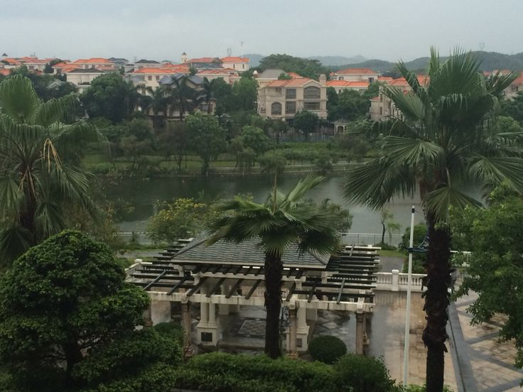 View from my window at Heshan Hotel