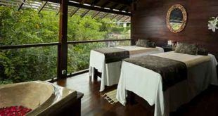 Bali Zoo Short Elephant Ride Expedition and Revitalization Spa
