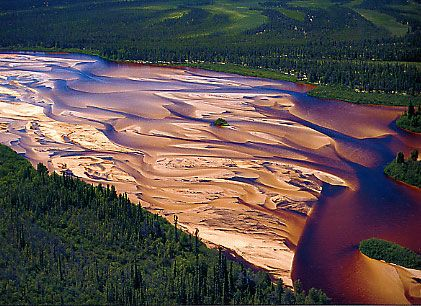 Athabasca Sand Dunes (let's go canoeing!)