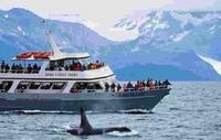 """Best of Alaska"" Tour: This is the ideal way to vacation in Alaska. We've combined the best modes of Alaska sightseeing transportation from luxurious domed railcars to our Portage Glacier cruising dayboat, the MV Ptarmigan. And this exceptional 7-day Alaska tour features two of Alaska's most spectacular national parks—Denali and Kenai Fjords."