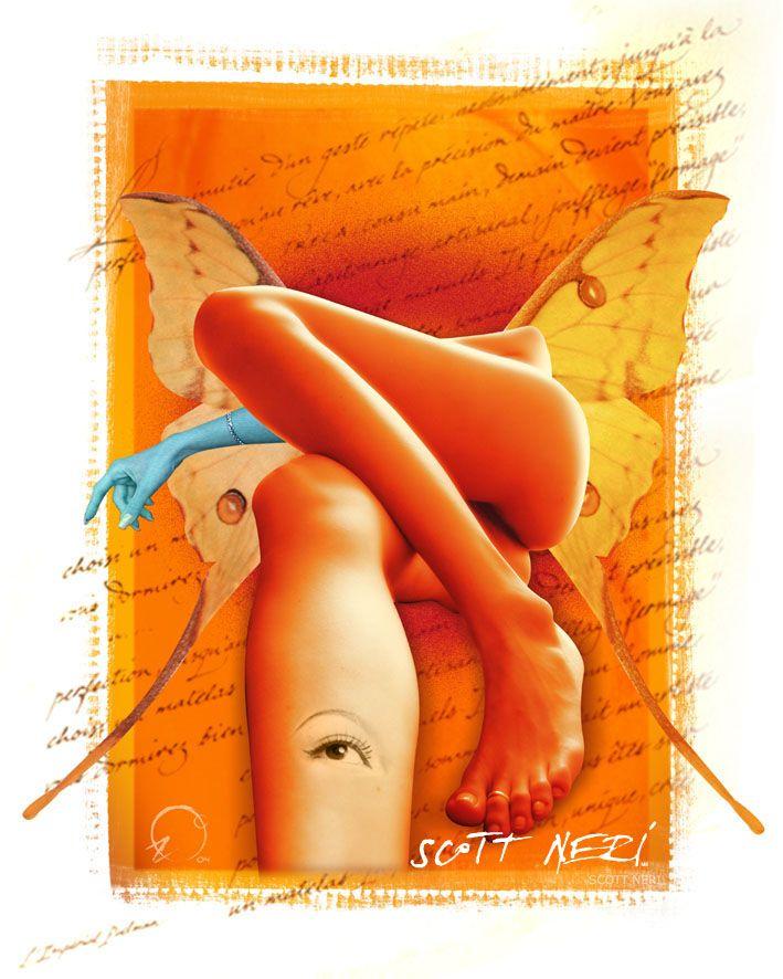 Dream Comes in Sex Parts / Arte Digital / Scott Neri ©2005