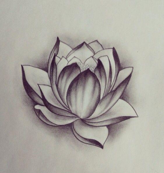 лотос цветок рисунок тату церковную