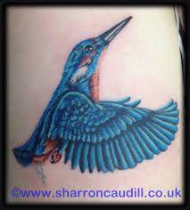 Afbeeldingsresultaat voor King fisher watercolour bird tattoo