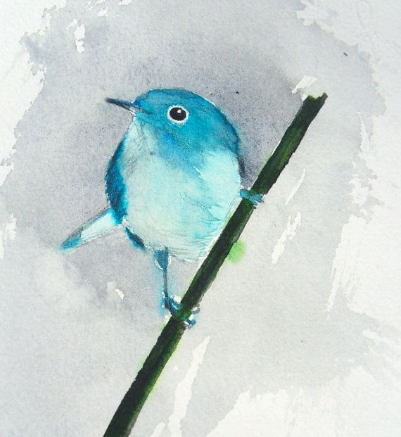 115 best Pájaro azul images on Pinterest   Bluebirds, Little birds ...