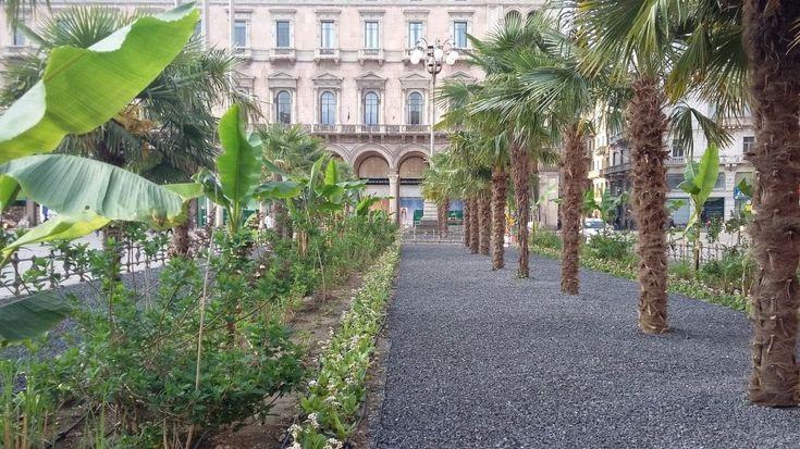 Aiuole, giardini e aree gioco: i 451 spazi verdi di Milano adottati dai privati