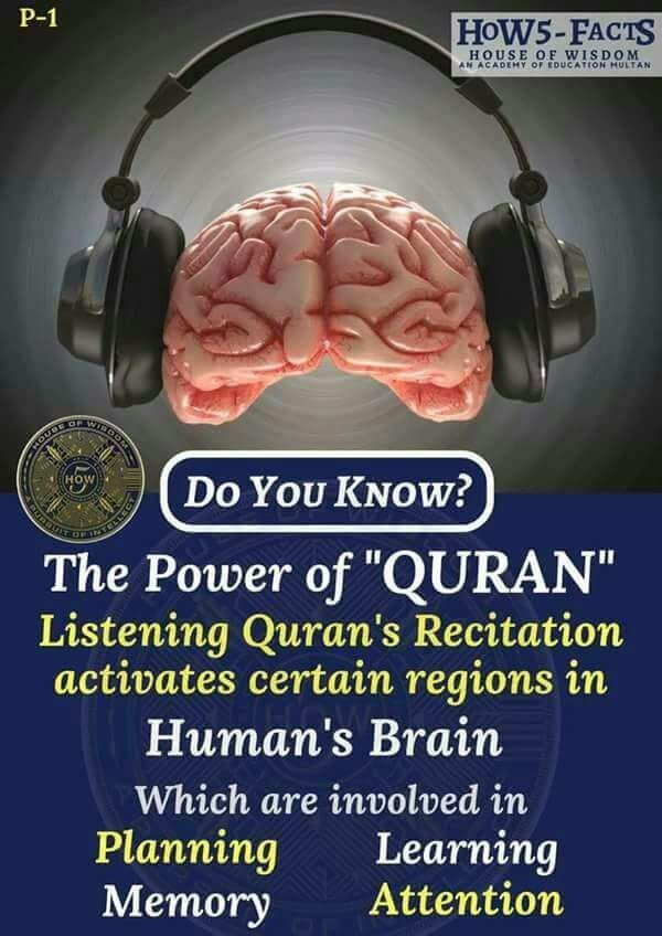 Pin By Soul On Learn And Gain Quran Recitation House Of Wisdom Human Brain