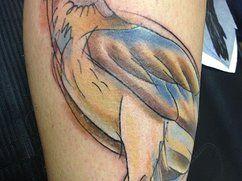 Eagle Sketch and watercolor style tattoo, tatuaje aguila estilo boceto y acuarela
