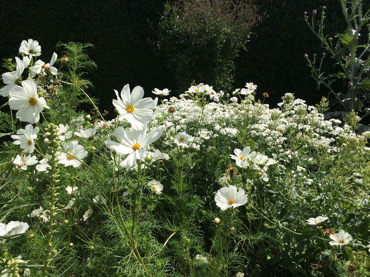 White Garden Sissinghurst UK