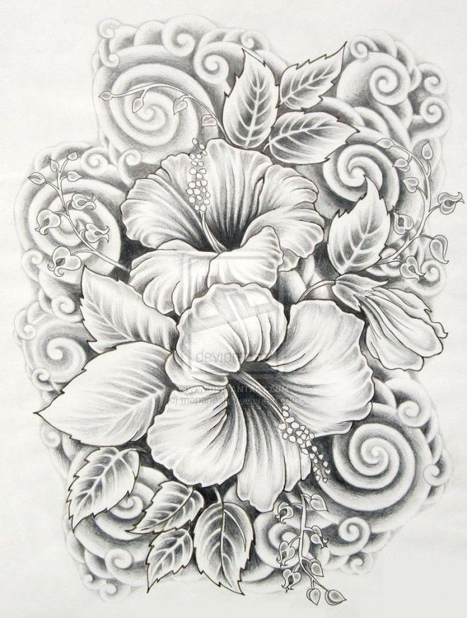 drawings of flowers hibiscus....maybe a cover up. :)