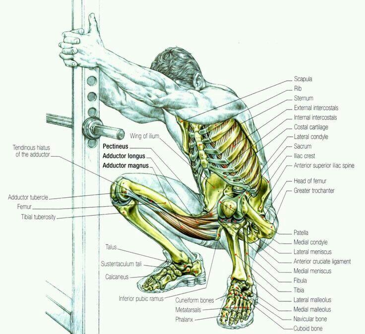 Mejores 9 imágenes de masajes en Pinterest   Masoterapia, Acupresión ...