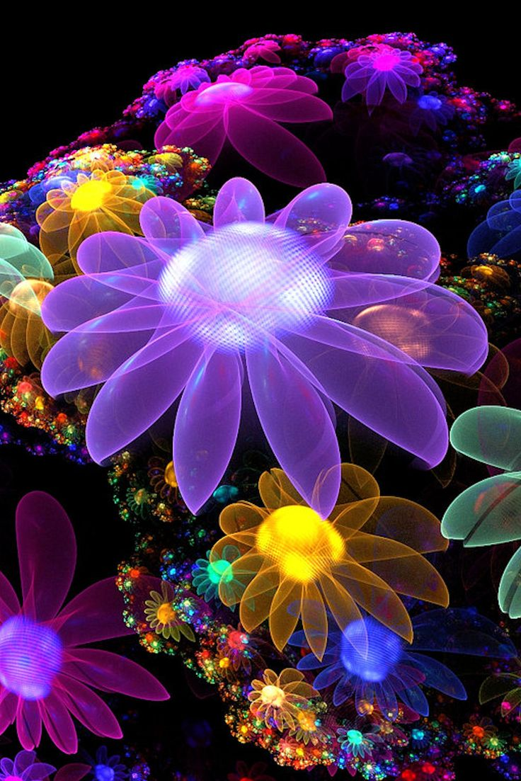 Flower Fractal