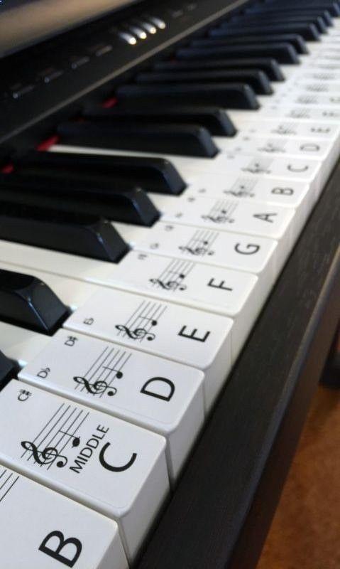 Cet ensemble d'étiquettes autocollantes est pour une clé piano ou clavier 61, les étiquettes sont en commande prêt à être placé sur les touches avec milieu C mis en évidence pour faciliter la consultation. Les étiquettes sont faciles à enlever si nécessaire. Chaque étiquette est 20mm de large x 48mm long sur un papier blanc brillant Opaque. Les étiquettes vous aidera tous ceux qui veulent apprendre le piano, avec la lettre de la clé et note le placement sur la barre à l'aide et aider à...
