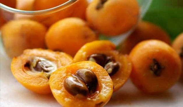 """Nêspera - Popularmente chamada de ameixa-amarela, esta fruta é rica em vitamina C e sais minerais, como o cálcio e o fósforo. Controla  os níveis de gordura no sangue e diminuir a resistência à insulina, atuando assim na prevenção contra diabetes. """"Estudos ainda indicam que a nêspera apresenta triterpenos, que age nas vias respiratórias, benéfico no controle de bronquite, além de auxiliar no tratamento de doenças alérgicas inflamatórias como asma, rinite e sinusite"""", explica Bárbara."""