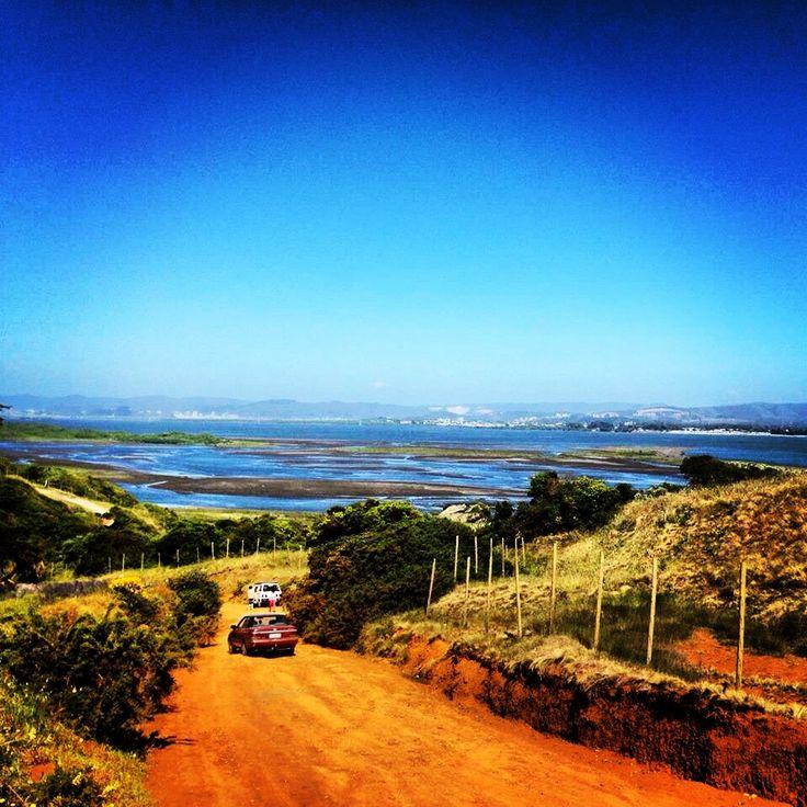 Hacia Rocoto en la Desembocadura del Rio Bio-bio