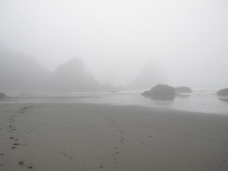 #fog #sea #ocean #mist