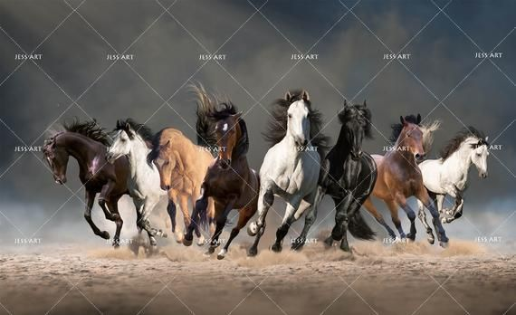 3d Magnificent Galloping Horse Wallpaper Removable Self Etsy 馬の壁紙 壁紙 馬