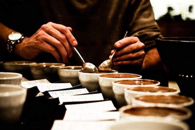Узнать какой кофе в зернах лучше, мы пригласили эксперта - cup tester! Кофе в зернах: советы, лучшие сорта кофе в зернах