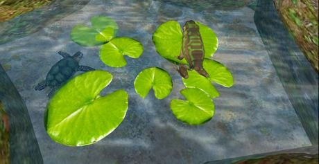 Animated Frog and Turtle On Lily Pads Mesh  3LI