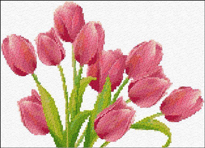 tulips: free cross stitch pattern by Ann Logan