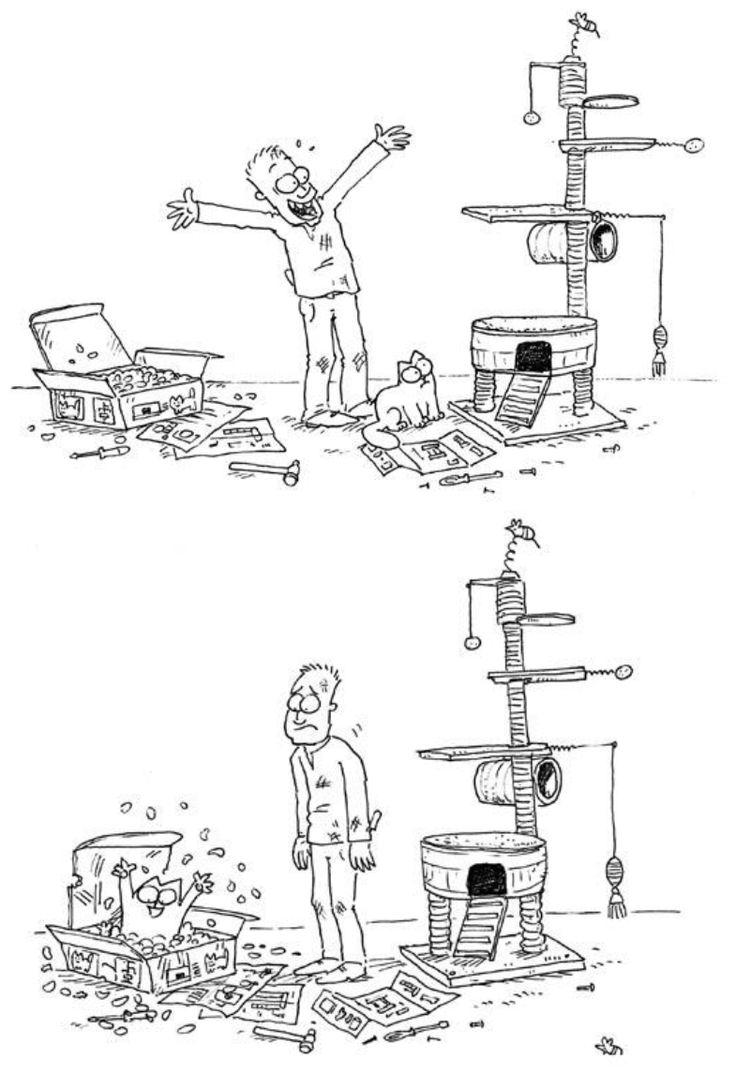 Soviel zum Thema neuer Kratzbaum ;) Ich habe es eingesehen , bei uns dürfen die Kartons bleiben .