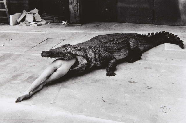 1983 Crocodile Eating Ballerina, from the Pina Bausch Ballet Keushleitslegende, Wuppertal.
