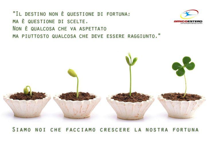 Siamo noi che facciamo crescere la nostra fortuna!
