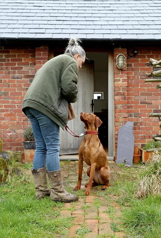 Bring your four legged friends along to our pet friendly cottages, Mulberry Cottages