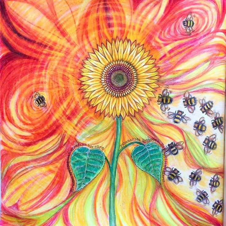 """""""Gün doğumuyla başlayan bir ritüel bu... Güneşe sevdalı bir çiçeğin sessiz senfonisi... Renklerin seremonisinde küçük vızıltıları kim duyar şimdi? …"""""""