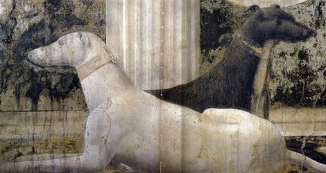 Piero Della Francesca, unknown francesca #art