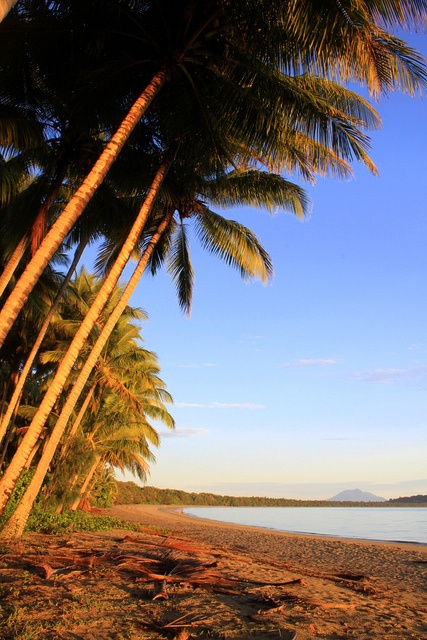 Looking towards Port Douglas on Four Mile Beach at sunrise