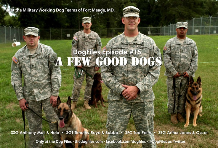 christian single men in fort meade Fort george g meade's best 100% free dating site meeting nice single men in fort george g meade can seem hopeless at times — but it doesn't have to be.