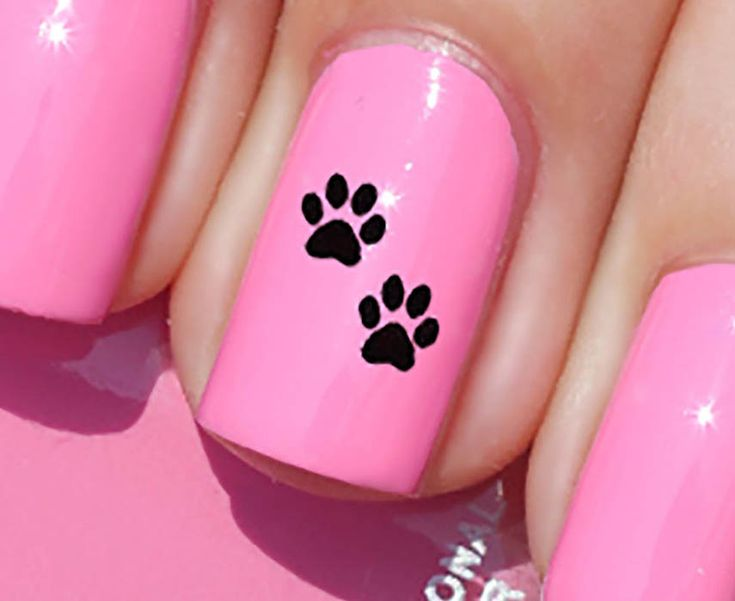 Paw Prints - 18 Best Pet Lover Nail Art Decals Images On Pinterest Cat, Cats