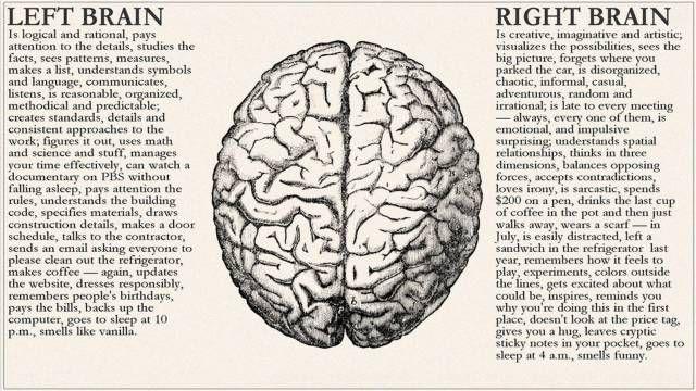 Brain of designer-3