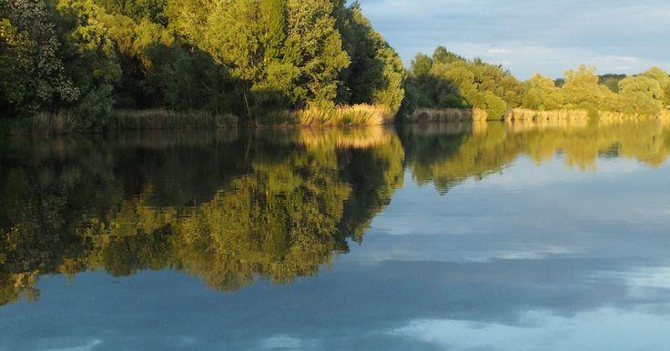 A Naplás-tó – hivatalos nevén a Szilas-pataki árvízvédelmi tározó – eddig sem szűkölködött a természetjárókat csábító tulajdonságokban. A víztükör és annak körülbelül...
