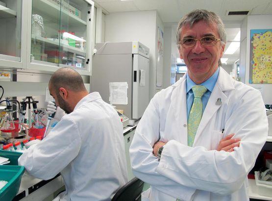 Cancer du Cerveau.Bravo au Dr Béliveau et son équipe pour avoir développé un « Nouveau médicaments »