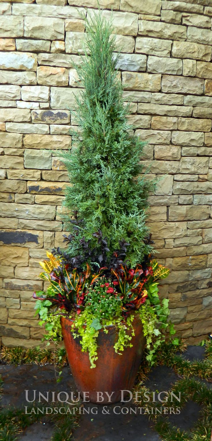 How pretty!  Could change the base planting colors and put lights in the tree for Christmas pots!
