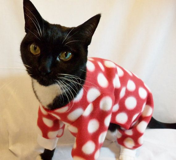 Cat Pajamas Large Polkadot Fleece Cat Pajamas   by RockinDogs, $24.00 @Emily Murtaugh