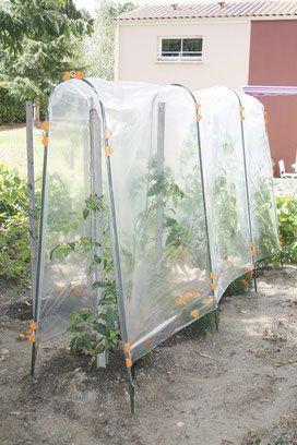 ©Nortene, Tomato Film, le film de forçage en polyéthylène pour tunnel haut #nortene #jardin #potager #culture #tomate #tuteur #film #forçage #jardiner